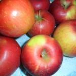 gyümölcs